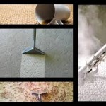 carpet cleaning Newark ca